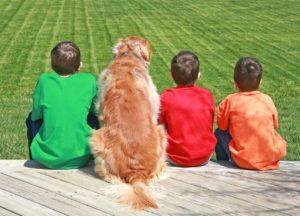 1 dog kids