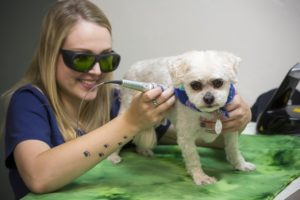 integrative medicine laser therapy
