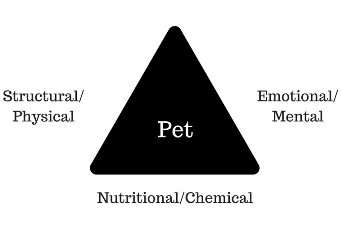wellness triangle