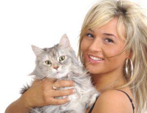 1 cat